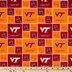 Virginia Tech Block Collegiate Cotton Fabric