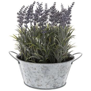 Lavender In Galvanized Metal Container
