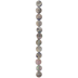 Iridescent Gray Coin Shell Bead Strand