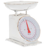 Antique White Metal Scale