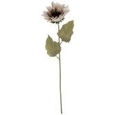 Taupe Sunflower Stem