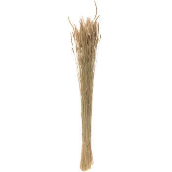 Natural Maton Grass