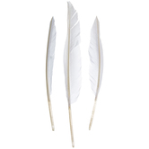 White Craft Feathers
