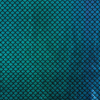 Mermaid Scale Knit Fabric