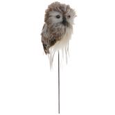 Owl Pick