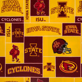 Iowa State Block Collegiate Fleece Fabric