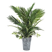 Palm Leaves In Galvanized Pot