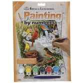 Garden Birds Paint By Number Kit