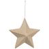 Paper Mache Star Ornament