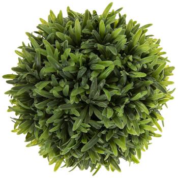 Green Rosemary In Urn
