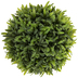 Green Rosemary In Urn - Large