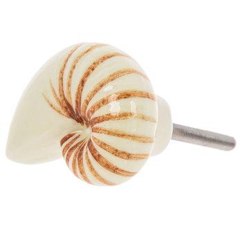Nautilus Shell Knob