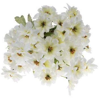 White Cosmo Bush