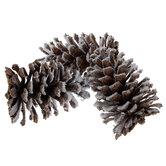 Flocked Pinecones