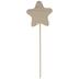 Wood Star On Stick