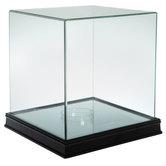 Glass Mirrored Basketball Case