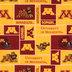 Minnesota Block Collegiate Fleece Fabric