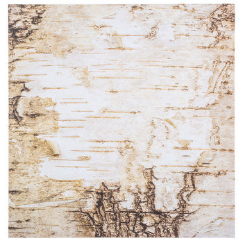 "Birch Bark Scrapbook Paper - 12"" x 12"""