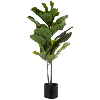 Potted Fiddle-Leaf Fig Tree
