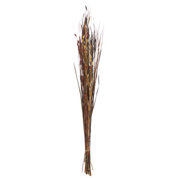Red, Brown & Yellow Dried Grass Harvest Bundle