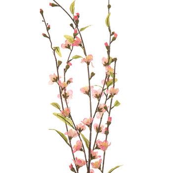 Pink Peach Blossom Stem