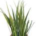 Grass In Gray & Gold Pot