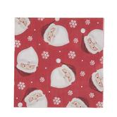 Santa Head & Snowflake Napkins - Small