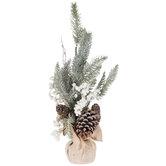 White Berry Pine Tree
