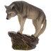 Gray Wolf On Rock