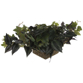 Green Mixed Ivy & Wandering Jew Topper