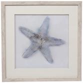 Watercolor Starfish Framed Wood Wall Decor