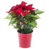 Poinsettia & Pinecone Arrangement
