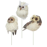 Tan & Cream Owls