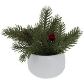 Pine & Berries In White Pot