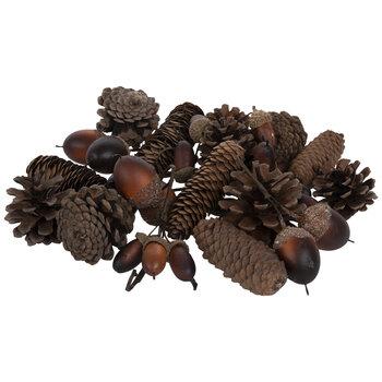 Pinecones & Acorns