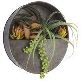 Round Air Plant & Succulent Metal Wall Decor
