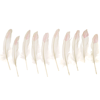 "White Glitter Feathers - 7"" - 8"""