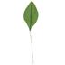 Green Rose Leaf Picks