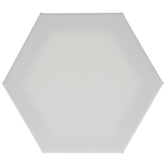 Hexagon Blank Canvas - Medium