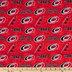 NHL Carolina Hurricanes Cotton Fabric