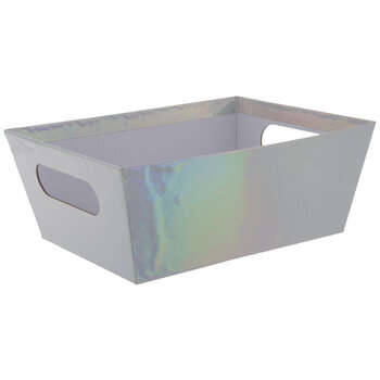 Silver Iridescent Container