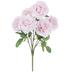 Antique Pink Rose Bush