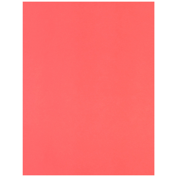 """84 Coral Canson Heavyweight Colorline Paper - 19"""" x 25"""""""