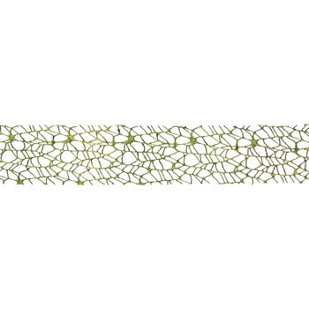 "Moss Mesh Ribbon - 2 1/2"""