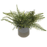 Mixed Greenery In Two-Tone Cement Pot