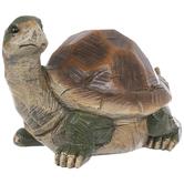 Standing Tortoise