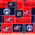 NHL Columbus Blue Jackets Block Fleece Fabric