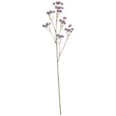 Purple Aralia Spray