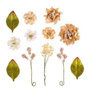 Beige Allegra Prima Flower Embellishments