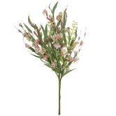 Coral Blossom & Berry Bush